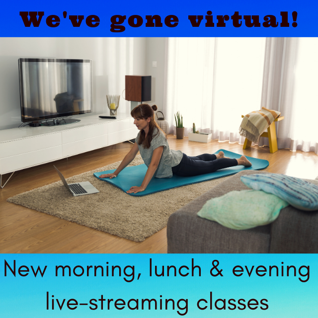 Virtual Yoga Classes at Quincy Yoga and Massage